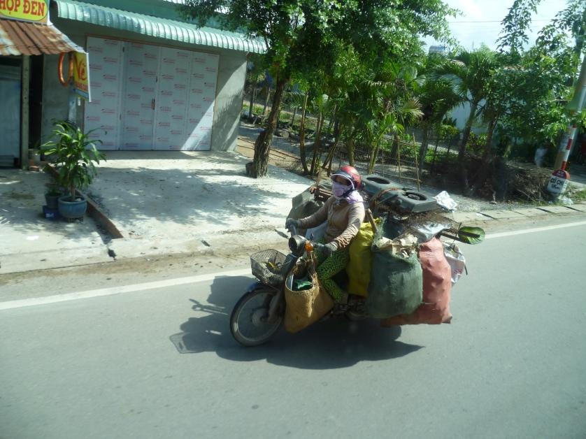 Volles Moped, Vietnam