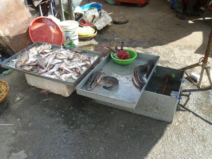 Fischstand, Phnom Penh